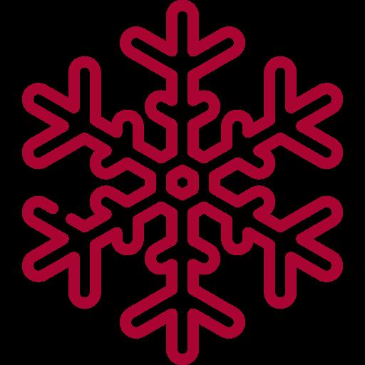 snowflake (1)